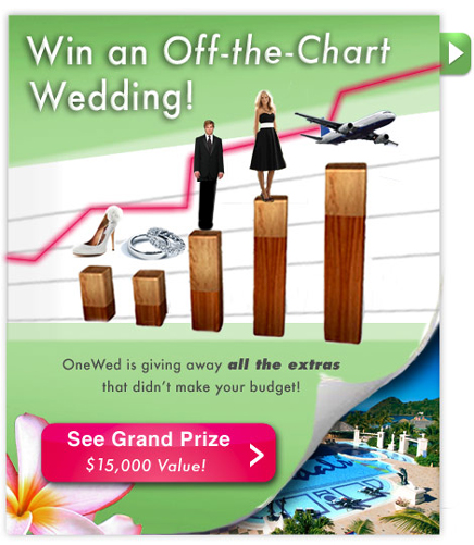 Off-the-Chart Wedding from OneWed